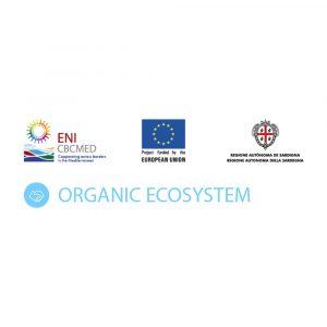 "Logo of project ""Organic Ecosystem"" Square"