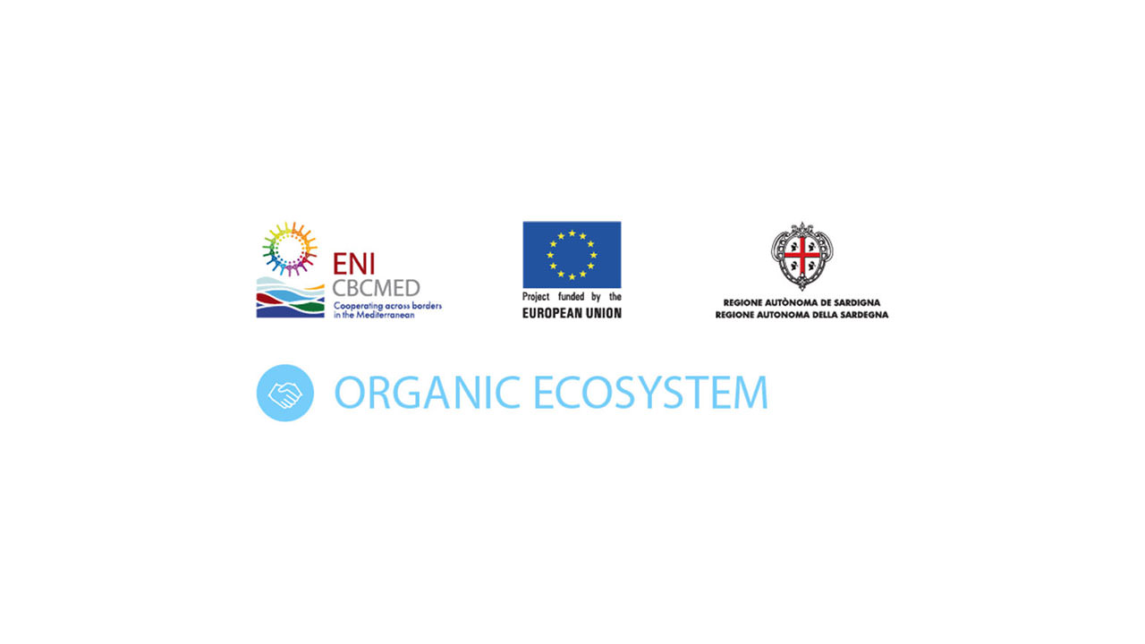 "Logo of project ""Organic Ecosystem"""